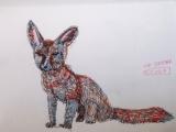 pen fox