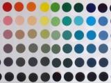 tint tone shade scale
