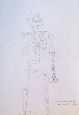 Skelty