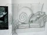gorey snail