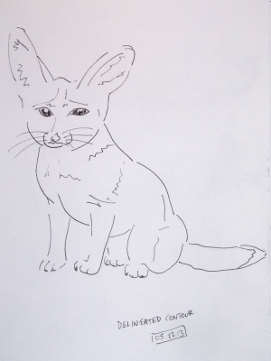 delineated fennec